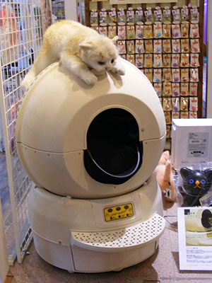 Litter Robot in the Odaiba cat cafe